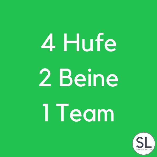 4 Hufe 2 Beine 1 Team - Pferdesprüche