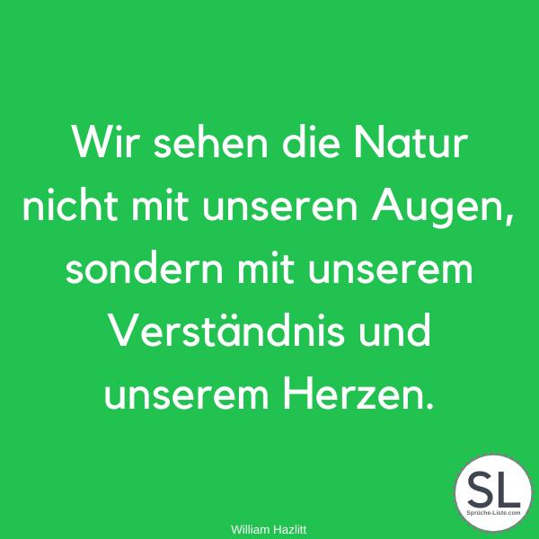 Wir sehen die Natur nicht mit unseren Augen, sondern mit unserem Verständnis und unserem Herzen von William Hazlitt - Natur Sprüche